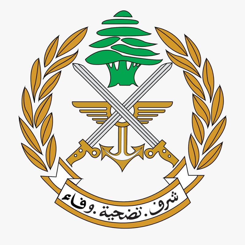 Lebanese Army start R44 tourist flights to raise money