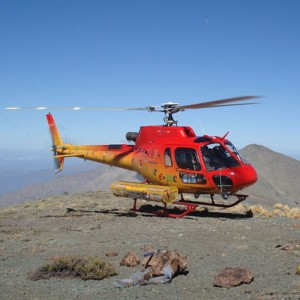 Eurocopter recognises Ecocopter for operations in Chile and Peru