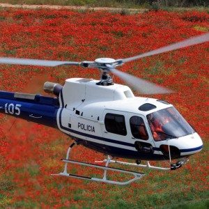 Eurocopter to show EC130, EC145 and AS350B3 at AAD 2012