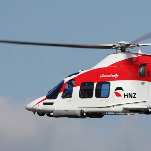 HNZ Group reports 2013 Year-End Results