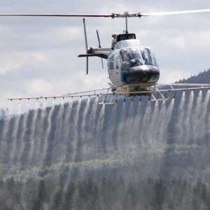 Ownership change at Farm & Forest Helicopter Service