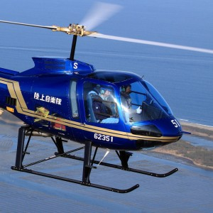 Enstrom expects Japanese signature by January