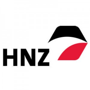 HNZ Group Reports 2016 Year-end Results
