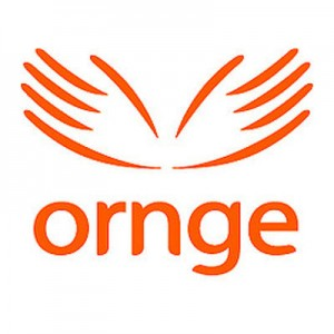ORNGE suspends night flights at remote sites across Ontario