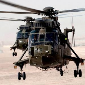 UK – 845 Naval Air Squadron celebrates 50 years