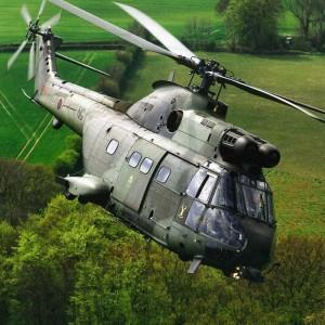 RAF celebrates 40 years of Puma ops